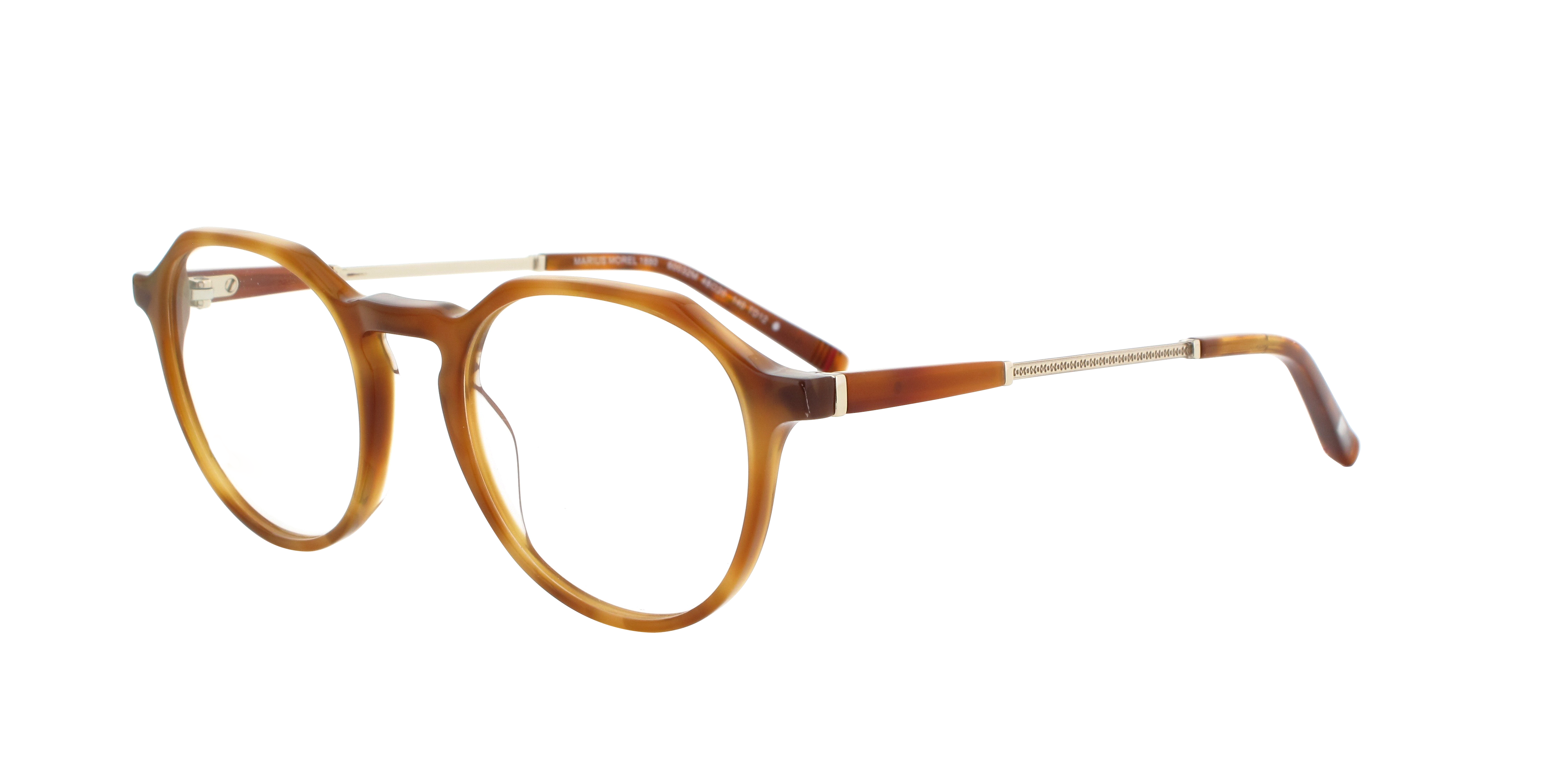 60032 Collection 1880 - tortoise