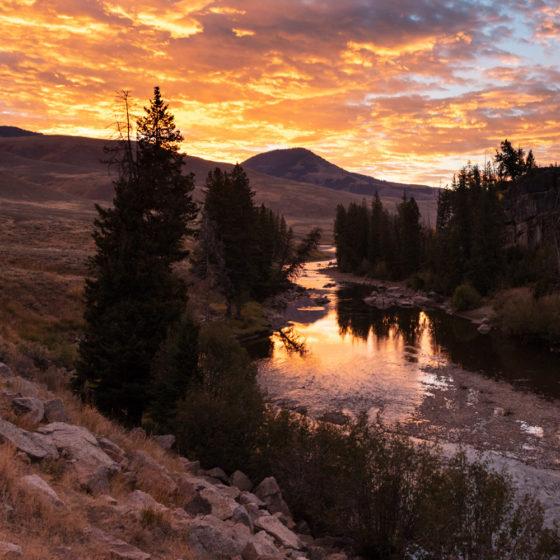Yellowstone-IG